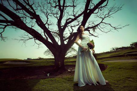 Black Bird Films presta servicio en la subcategoría de Fotógrafos de bodas en Madrid