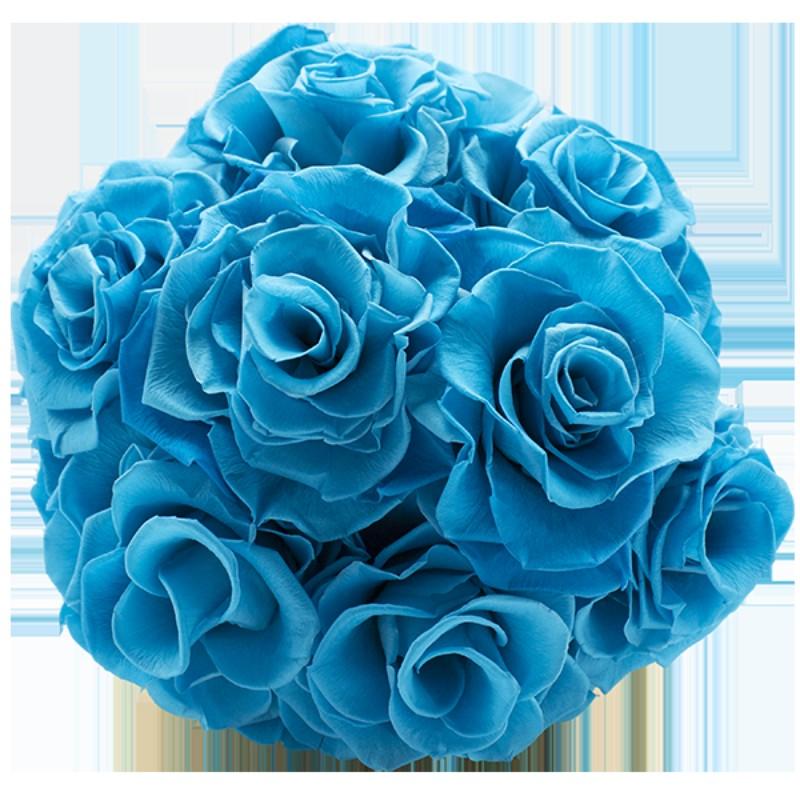 Rosmelia Medium preservada. Color Aquamarine