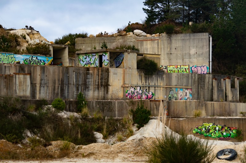 El bosque de Tim Burton