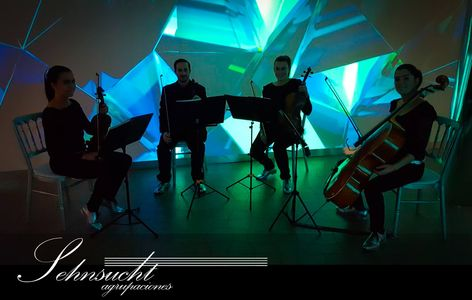 Sehnsucht Agrupaciones presta servicio en la subcategoría de Música clásica, Ópera y Coros en Málaga