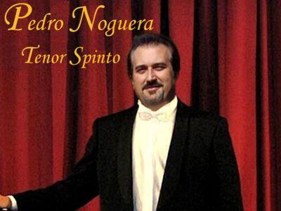 Vipmur Música presta servicio en la subcategoría de Música clásica, Ópera y Coros en Murcia