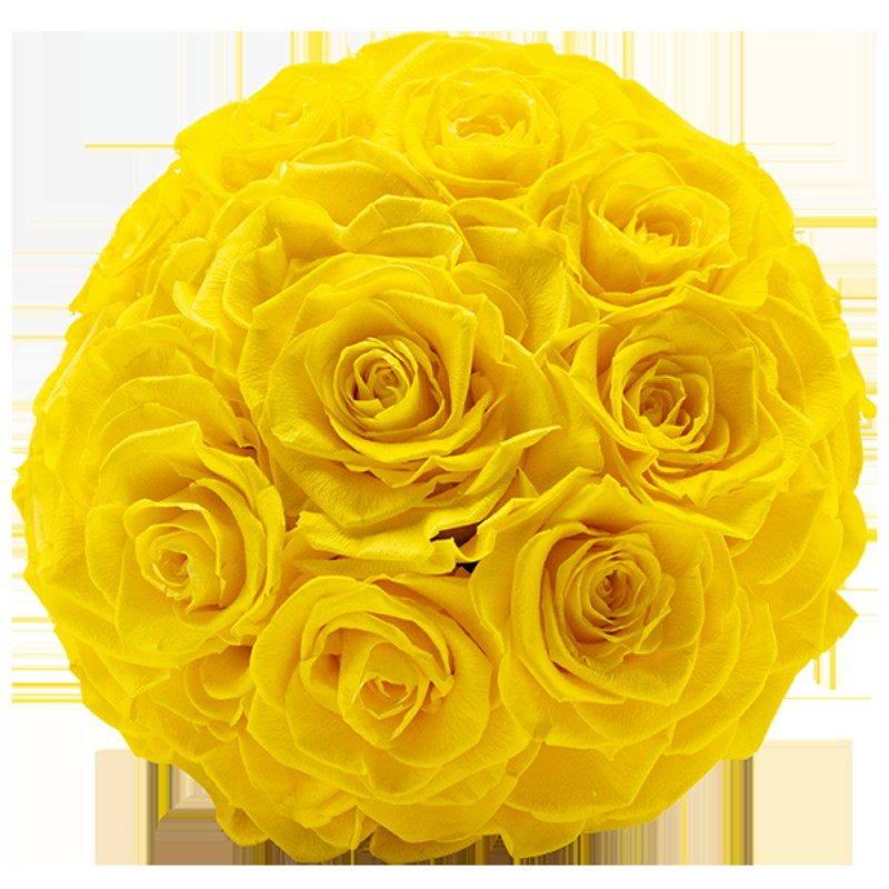 Rosmelia Medium preservada. Color Sunny Yellow