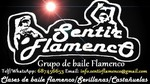 Grupo de baile Sentir Flamenco