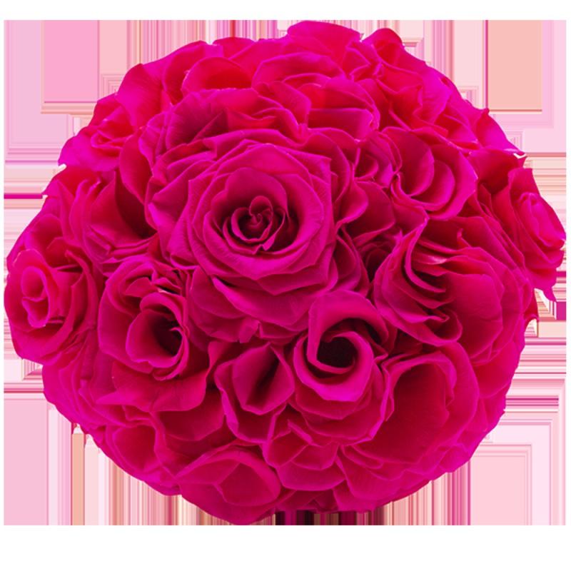 Rosmelia Medium preservada. Color Hot Pink