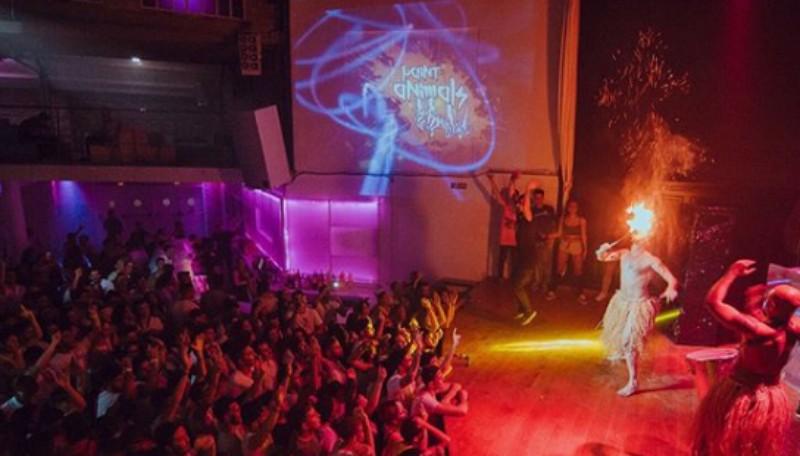 Animación discoteca: acrobacia + fuego + percusión