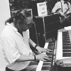 Jazz Monkey presta servicio en la subcategoría de Grupos de Jazz en Toledo