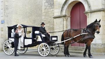 Coches de caballo y carruajes en Valencia