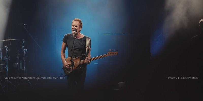 Sting Músicos en la naturaleza concierto