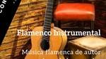 Empresa de Flamenco y Coros Rocieros en Vizcaya Grupo Handalu