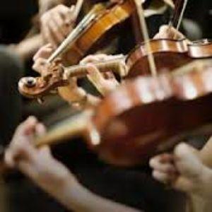 Allegri presta servicio en la subcategoría de Música clásica, Ópera y Coros en Vizcaya