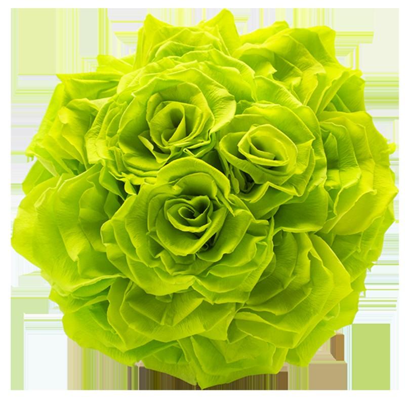 Rosmelia Medium preservada. Color Green Glow