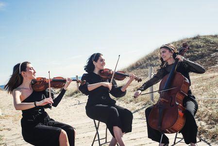 Art i Arcs presta servicio en la subcategoría de Música clásica, Ópera y Coros en Valencia