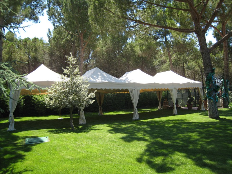 carpa 6x4 royal