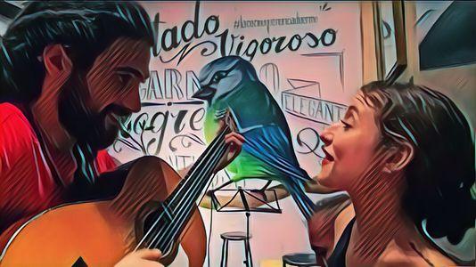 Dúo acústico a guitarra y voz presta servicio en la subcategoría de Grupos de Rock y Pop en Sevilla