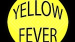 Yellow Fever Cover Band